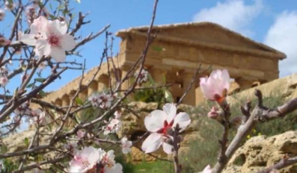 In bici per la Valle dei Templi di Agrigento